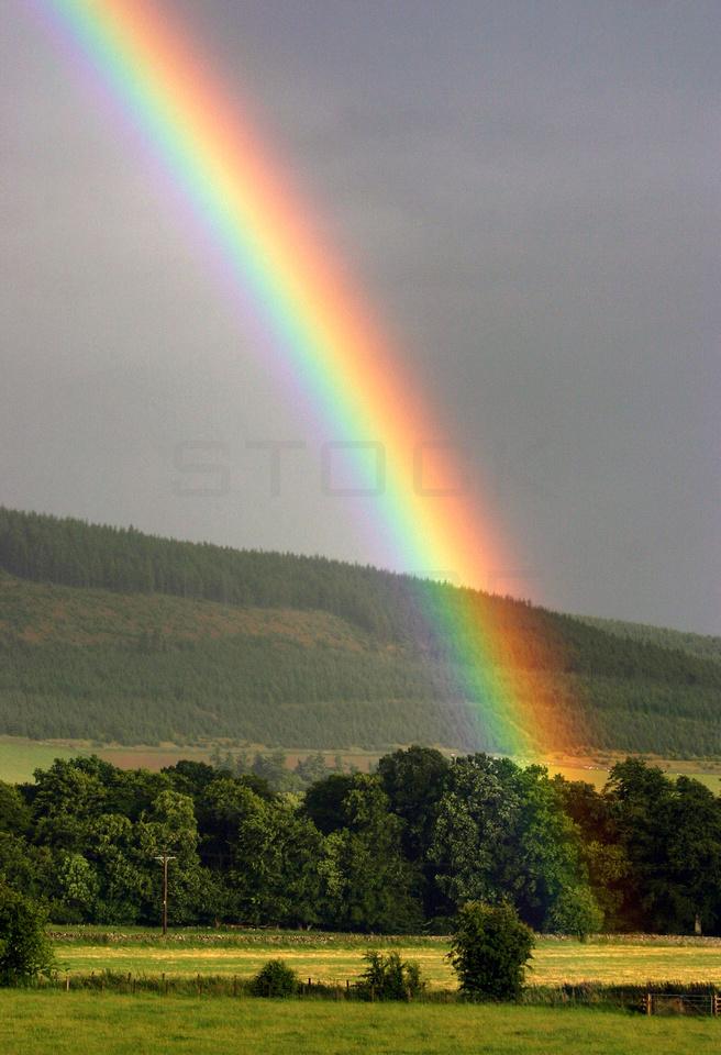 Rainbow's Rest