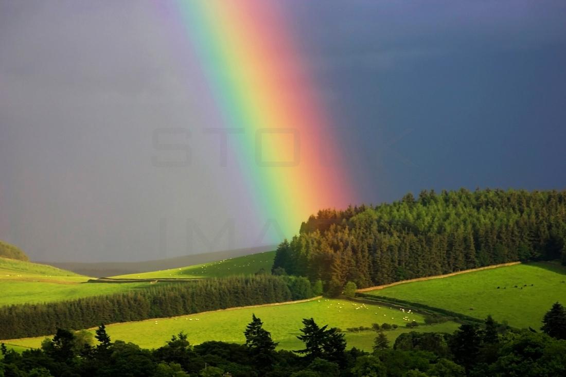 Traquair Rainbow_3309