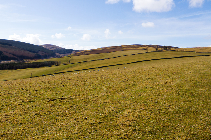 Newhall Hill to Blake Muir-0590
