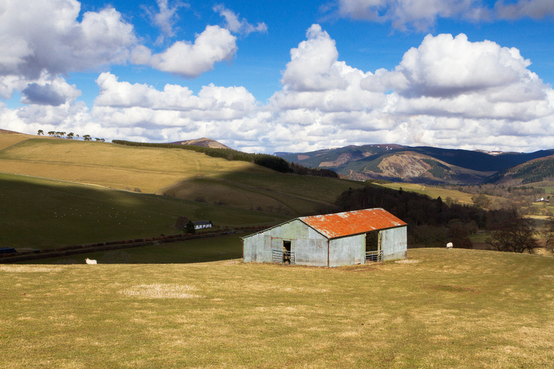 Barn on the Hill-0748