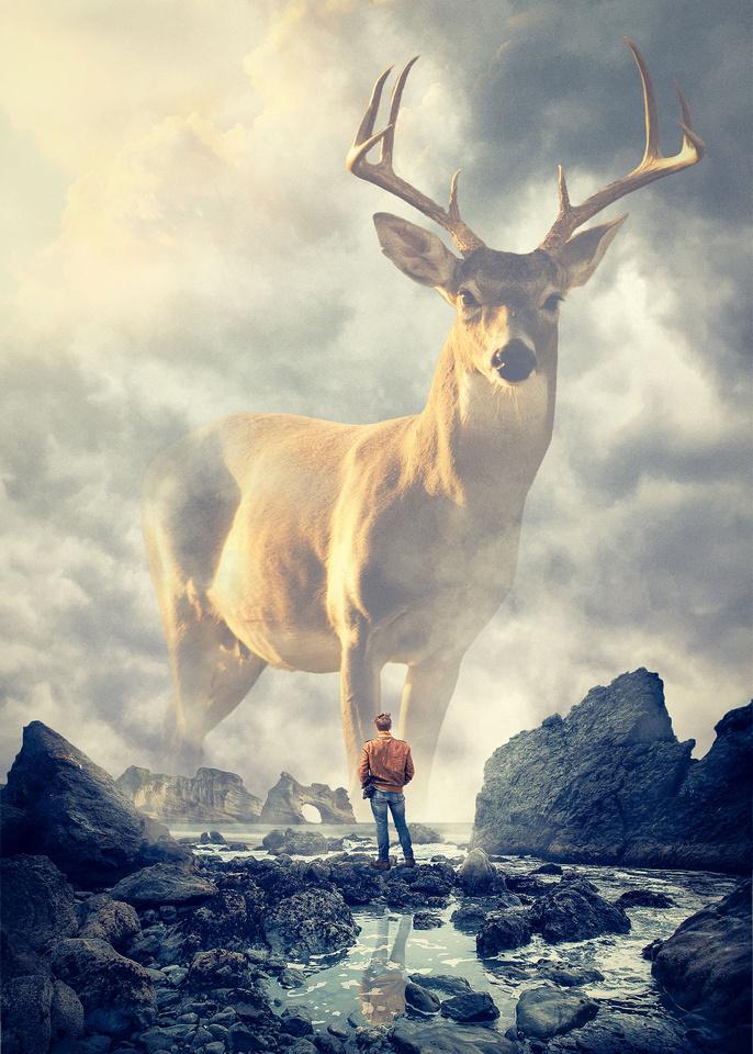 majestic-spirit-animal_comp
