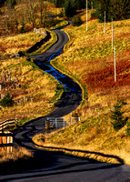 The Long and Winding Road to Fruid_0055_7D2