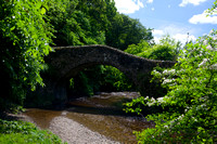 Cuddy Bridge in Summer_1396