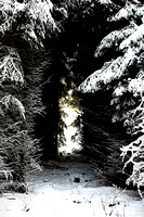 Exit from Narnia_2042