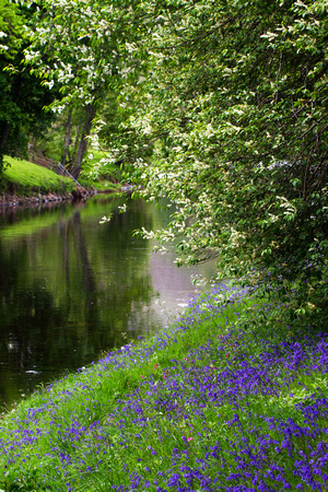 Image result for March or spring photographs